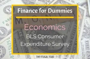 consumer expenditure survey