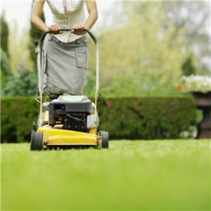 save money by cutting grass